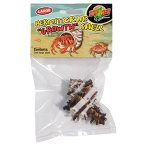 HERMIT CRAB GROWTH SHELL 1pcs - LARGE ZMHC37