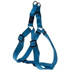 UTILITY-SNAKE STEP IN HARNESS - TURQUOISE (MEDIUM) RG0SSJ11F