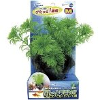 PITATTO PLANTS - GREEN (MEDIUM) NAP182
