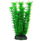 AQUATIC PLANTS LARGE - 6 NAP385