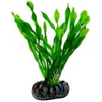 AQUATIC PLANTS MEDIUM - 5 NAP364