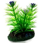 AQUATIC PLANTS SS - 5 NAP304