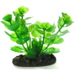 AQUATIC PLANTS SS - 7 NAP306