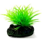 AQUATIC PLANTS SS - 8 NAP307