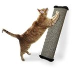 LEAN-IT EVERYWHERE SCRATCH POST (LARGE) ASSORTED OMP0WLSPM3