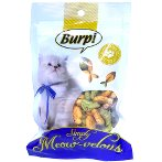 CAT BISCUITS-2 IN 1 SALMON & CATNIP FLAVOR 50g BWFWC20632