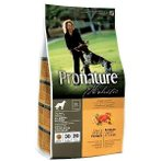 HOLISTIC DOG ADULT DUCK & ORANGE 13.6kg PN0VS01N6APH