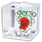BETTA EZ CARE AQUA - WHITE 2.5L 13357