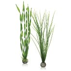 EASY PLANT SET - LARGE (GREEN) BIO46057
