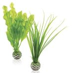 EASY PLANT SET - SMALL (GREEN) BIO46055