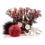 DECO SET RED FOREST (15L) 4pcs BIO488442
