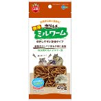 INSECT SPECIALTY DRY MEALWORMS 40g ML166