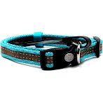 REFLECTIVE COLLAR (TURQUOISE) (MEDIUM) BWNDC0215TQM