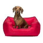LOUNGER SOFA BED (RED) (MEDIUM) DGS0KLB2606