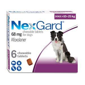NexGard Fleas & Ticks Flav Chew (L) Dog (10-25 kg) 6 Tabs