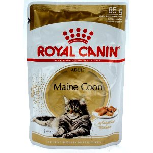 cheap maine coon adult in pouch g royal canin with royal canin maine coon