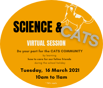 Science & Cats Virtual Session