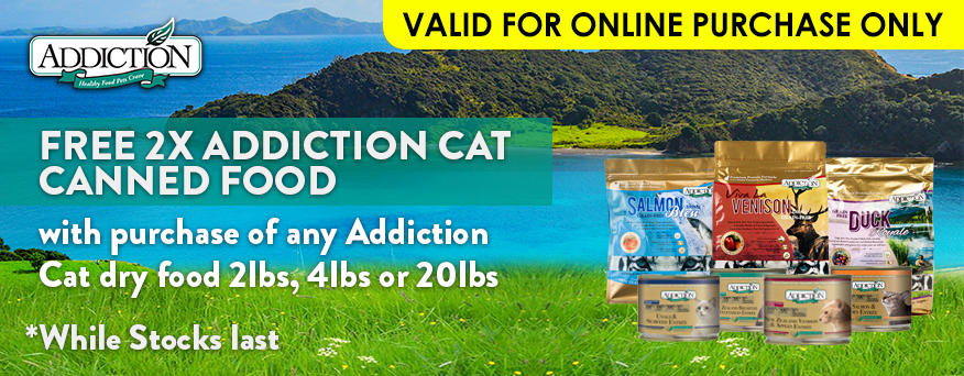 Addiction Cat Promotion