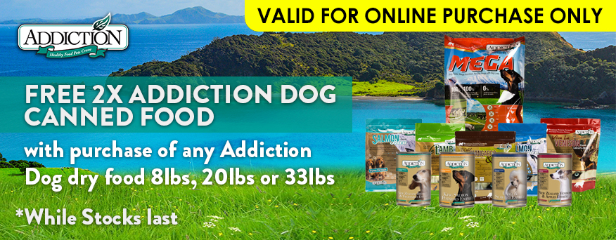 Addiction Dog Promotion
