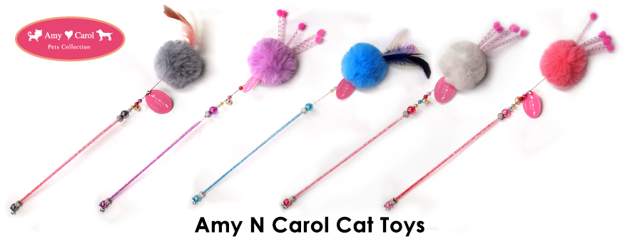 Amy N Carol Cat Teaser