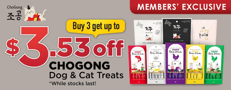 Chogong Promotion