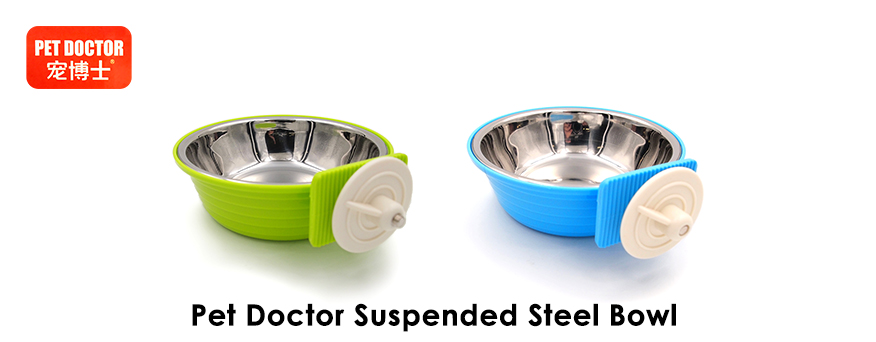 Pet Dr Bowl